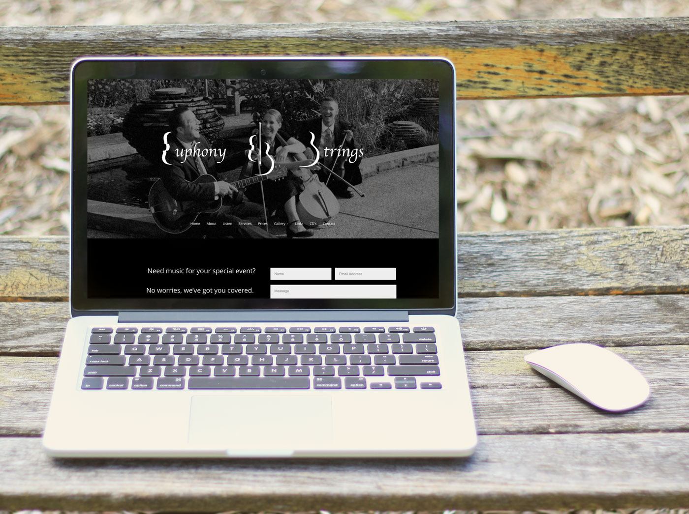 Euphony Strings mobile responsive website home page view